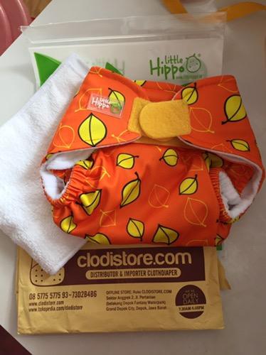 Beralih Memakai Cloth Diaper